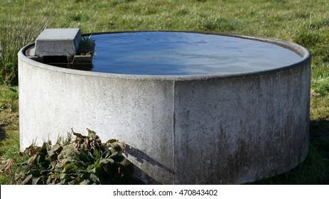 Farmland Water Trough