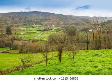 Farmlands and trees in Cerdedo village at winter, Galicia, Spain