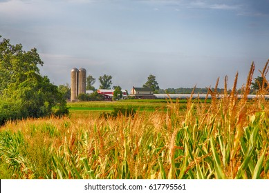 Farms in Amish Country Lancaster, Pennsylvania during the harvest.