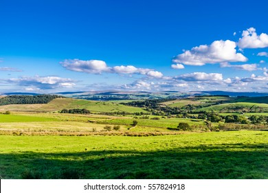 Farms on Summer, blue sky and white clouds, Forest Of Bowland, Lancashire, England, UK