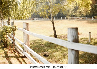 farmyard on a sunny day. Selective focuse. White wooden fence in the village. Farm in the fall