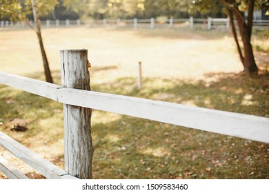 farmyard on a sunny day. White wooden fence in the village. Farm in the early fall