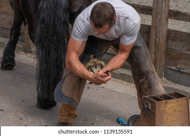 farrier blacksmith working on hoof horse shoe