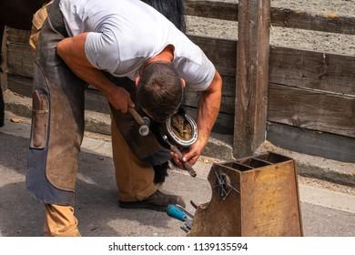 farrier blacksmith working on hoof horse shoe