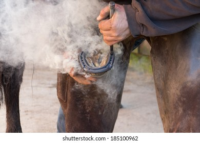 Farrier/blacksmith  in close up shot as he fits red hot shoe to horses hoof.
