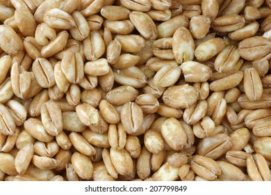 farro grain background