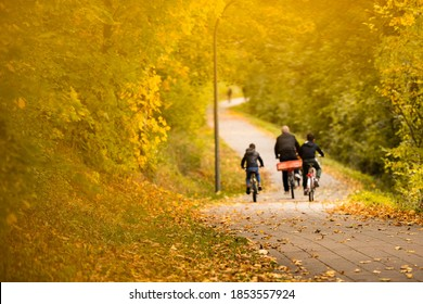 a farther and his sons riding their bikes in the park at autumn time