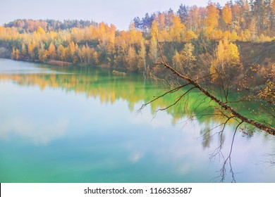 Fascinating pond. Beautiful bright autumn landscape. Yellow trees in enchanting forest. Leaves fall from branches on sunny autumn day. Golden trees in park. Fascinating landscape with green pond
