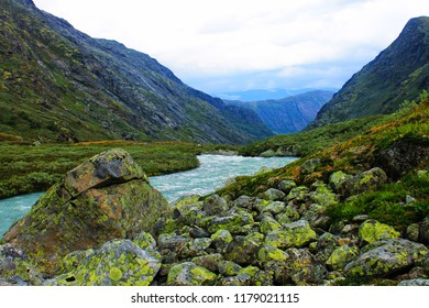 Fascinating river in valley during the mountains in Norway, Europe. Stream of water, shrubs, waves, clouds, sun all together. Perfect scenery
