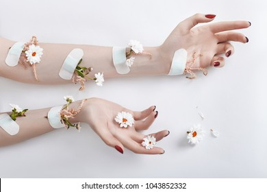 Fashion art hand care and purple flowers grow out of women hands. Flowers grow from under skin sealed with plaster. Creative beauty photo hands, sitting at table contrasting colored shadows