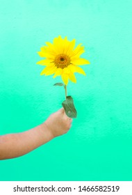 Fashion art hand of a little child holding sunflower bouquet on a blue background