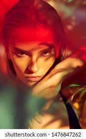 Fashion art portrait of young and sexy female model posing in multicolor lights and plant shadows on face