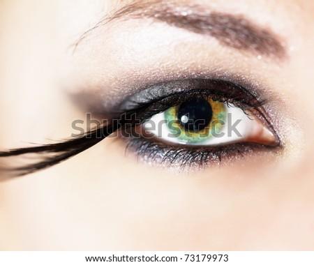 3437b074176 Fashion Eye Makeup Feather False Eyelashes Stock Photo (Edit Now ...
