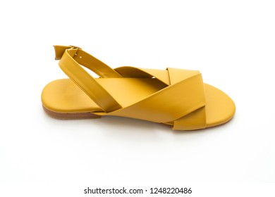 fashion female and woman leather sandals with slingback isolated on white background