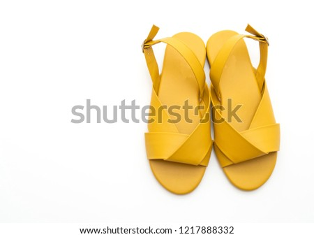 bdd5379e50ed fashion female and woman leather sandals with slingback isolated on white  background