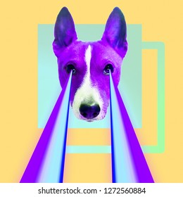 Fashion hipster Dog with rainbow lasers from eyes. Animal funny collage art