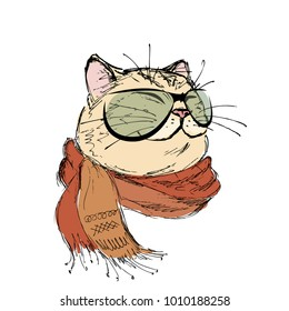 fashion portrait of kitten boy, cat with scarf and glasses, hand drawn isolated on white,  illustration