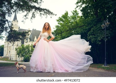 Fashion woman in pink splendid dress posing with small dog with castle at background