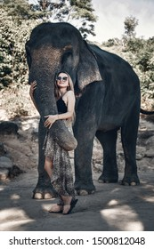 Fashionable girl in sunglasses and cute dress with leopard print kindly touches elephant's trunk; exotic animals, glamour.