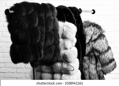 fashionable luxurious waist coats of fur hanging on rack on golden hangers on brick wall studio background