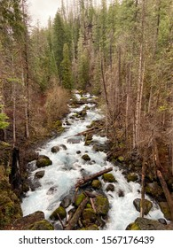 the fast flowing mckenzie river in oregon