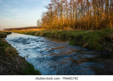 Fast flowing river, green grass on the shore and trees without leaves