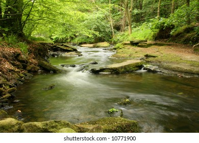 Fast flowing river through a wood