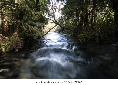 A fast flowing river in Waikato, New Zealand. This image represents energy, fast, speed, direction, goals, moving forward and motion. It is suitable for background use. It was taken in a forest.