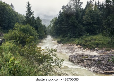 Fast river stream in a mountain forest at  rainy day. Beautiful river in forest nature. Mountain river pass through cloudy forest. Wilderness nature of Austria mountains. River storm in a green forest