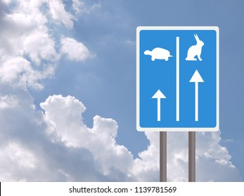 Fast and slow lanes for tortroise aka turtle and hare, business success concept. White background. UK colour blue sign.
