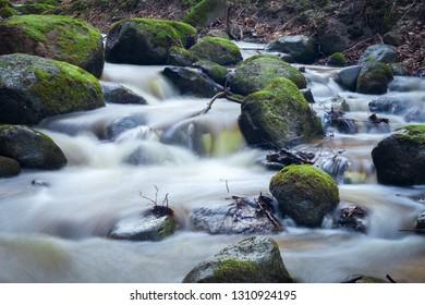 Fast stream deep in the wild wood.