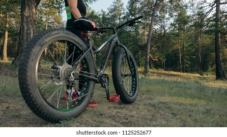 Fat bike also called fatbike or fat-tire bike in summer riding in the forest. The woman rides a bicycle among trees and stumps. He overcomes some obstacles on a bumpy road.