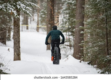 Fat bikes cycling on winter trails
