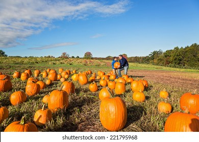 father and child picking out a pumpkin from a pumpkin patch