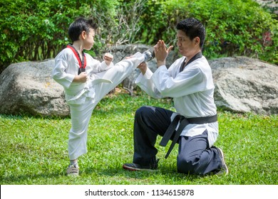father coach is training his son boy taekwondo kick in green park .children kid and teacher master trainer are learning karate outdoor in the nature park