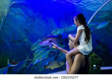 Father and daughter looking at the aquarium