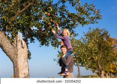 Father and daughter picking apples from a colorful Apple tree in autumn in front of blue sky