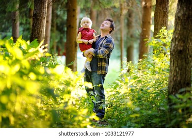 Father and his little son during the hiking activities in forest at sunset. Family walking in summer forest. Active/sporty leisure time on the nature