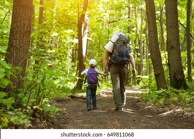 father holding hand of little son with backpack hiking in forest.