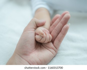Father holding Newborn hand,Happy Family and Baby protection concept. Mom and dad holding the hand of their child.