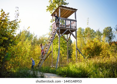 Father and kids having fun at observation tower on Tauciuliskes cognitive walking way, leading through beautiful autumn forest to the Tauciliuskes lake, located near Vilnius, Lithiania.