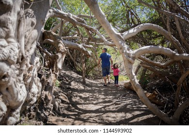 Father and little daughter walking on a path of in a wetland in Padul, Granada, Andalusia, Spain