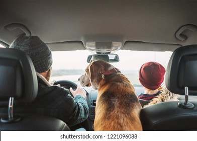 Father with son and beagle dog traveling together by auto rear seats wide angle shoot