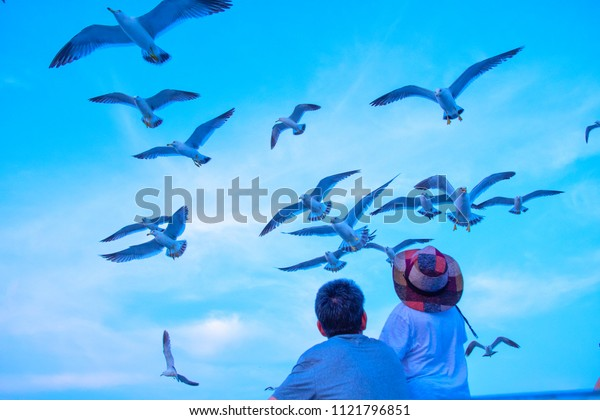 Father and son are feeding birds by the sea on holiday.