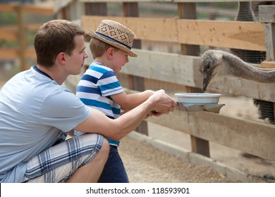 Father and son feeding birds at a farm