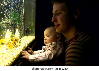 father and son looking at aquarium