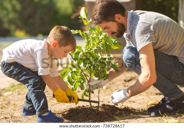 The father and a son plant a little tree