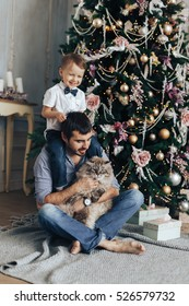 father and son playing with a cat at the Christmas tree