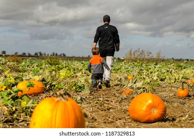 Father and son in Pumpkin Patch