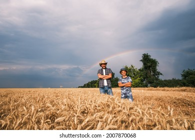 Father and son are standing in their wheat field after successful sowing and growth. They are getting ready for harvesting. Rainbow in the sky behind them.